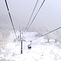 NISEKO希爾頓飯店+滑雪場 (9).jpg