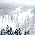 NISEKO希爾頓飯店+滑雪場 (12).jpg
