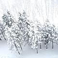 NISEKO希爾頓飯店+滑雪場 (13).jpg