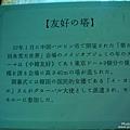 白樺湖冰燈祭 (10).jpg