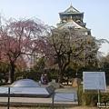 大阪城 (4).jpg