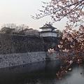 大阪城 (8).jpg