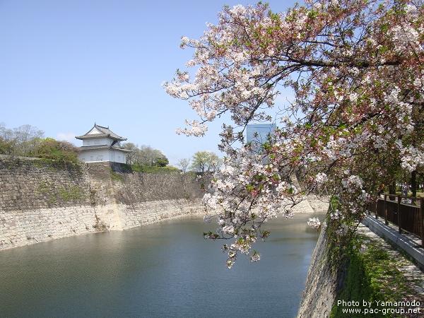 大阪城 (1).jpg