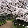 明石公園 (3).jpg