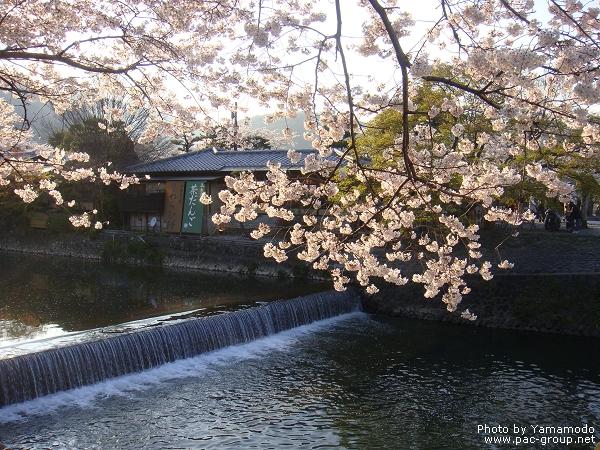 嵐山 (13).jpg