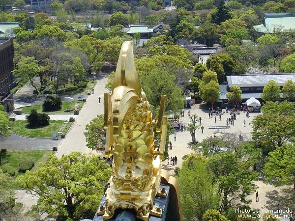 大阪城 (14).jpg