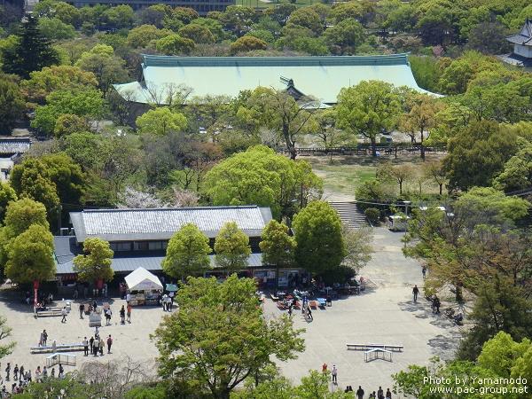 大阪城 (15).jpg