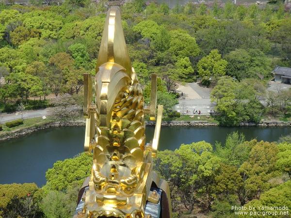 大阪城 (17).jpg