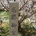 仁和寺 (25).jpg