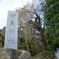 妙義神社 (1).jpg