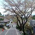 妙義神社 (2).jpg
