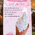 金澤兼六園 (6).jpg