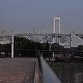 nEO_IMG_台場 (10).jpg