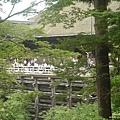 清水寺 (5).jpg