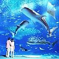 01美麗沖繩之海水族館(使用圖檔請註明「沖繩海洋博公園提供」).jpg