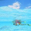 13沖繩海底風光(使用圖檔請註明「(財)沖繩觀光會議局提供」).jpg