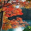 nEO_IMG_goshikinuma-bishamonnuma5.jpg