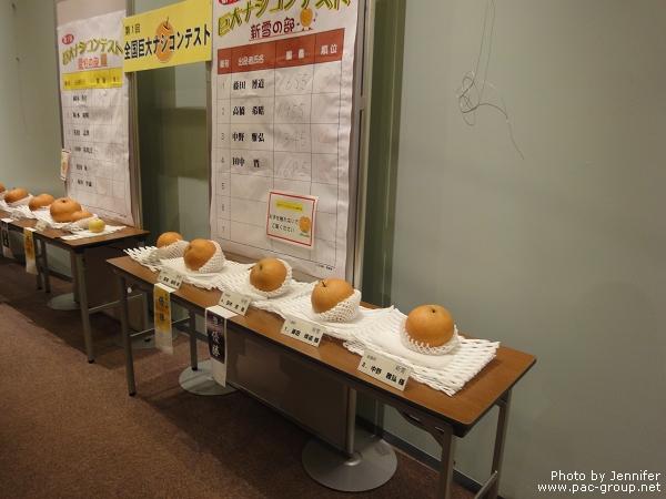 二十世紀梨紀念館 (3).jpg
