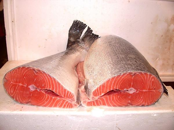 鮭魚切半.jpg