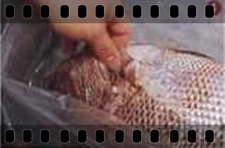 一般海鮮魚的基本處裡法