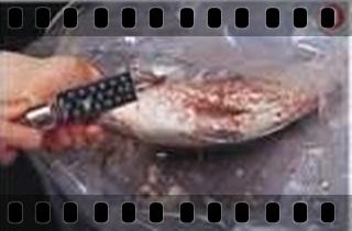 海鮮魚類的基本處裡法-crop3.jpg