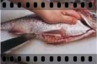 海鮮魚類的基本處裡法-crop7.jpg