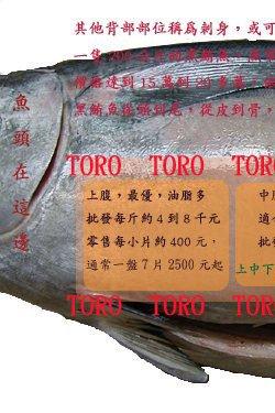 黑鮪魚TORO介紹及部位解說