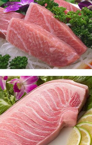 黑鮪魚生魚片1.jpg