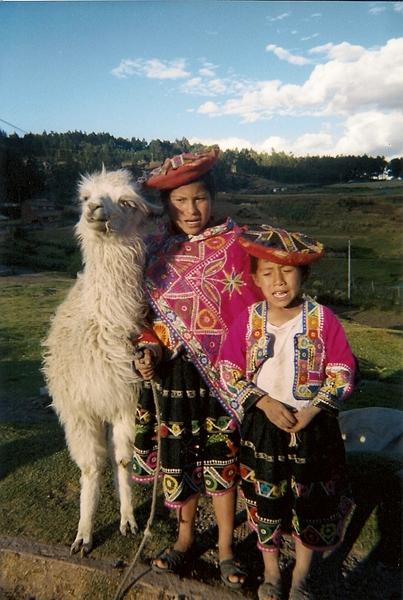 標標準準的印加後裔還有美洲駝馬