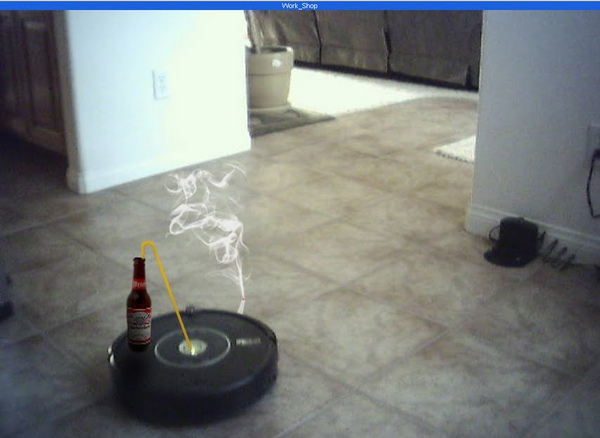 Roomba Slacking.jpg