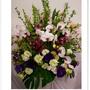 蘭花盆花.jpg