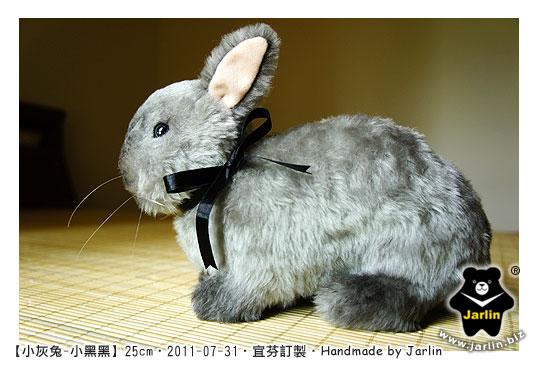 20110731_小灰兔-小黑黑01.jpg