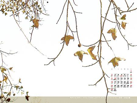 1110-3.jpg