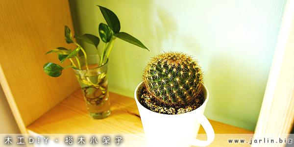 20111023松木小架子00.jpg