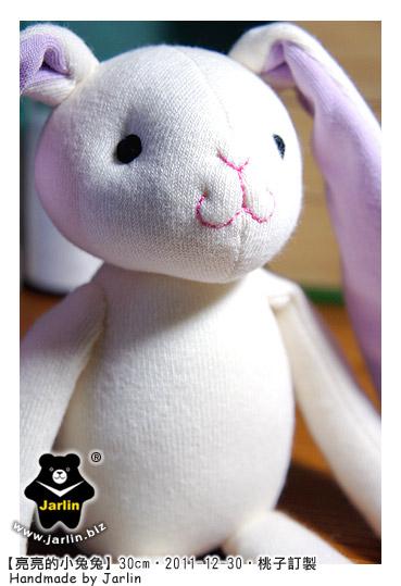 20111230_亮亮的小兔兔01.jpg