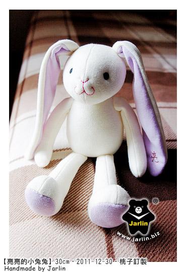 20111230_亮亮的小兔兔04.jpg