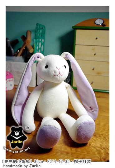 20111230_亮亮的小兔兔02.jpg
