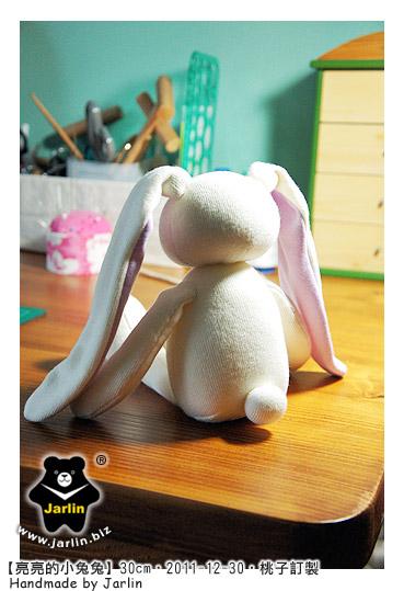 20111230_亮亮的小兔兔03.jpg