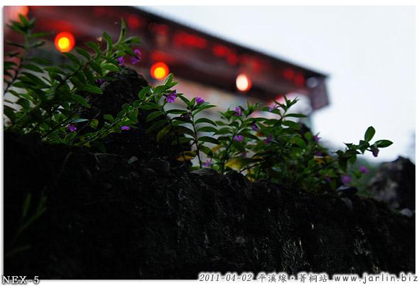 110402_12平溪線_菁桐站.jpg