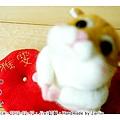 羊毛氈_Jimi_小倉鼠05_felt hamster