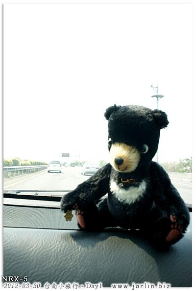 01台南小旅行day1_台灣黑熊
