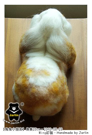 20120829_兔兔小朋友_03