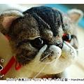 羊毛氈貓咪_felt cat_babe_04