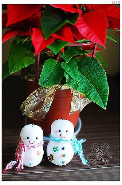 Jarlin的聖誕紅2012-2