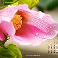 月曆1月_1400x1050_2