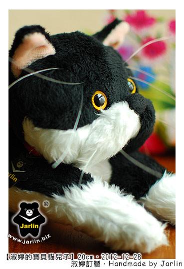 20121228_淑婷的寶貝貓兒子02