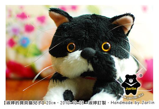 20121228_淑婷的寶貝貓兒子01