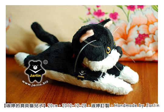 20121228_淑婷的寶貝貓兒子04