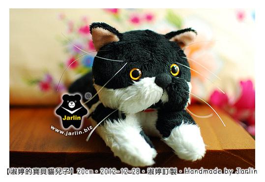 20121228_淑婷的寶貝貓兒子03