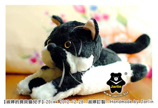 20121228_淑婷的寶貝貓兒子05